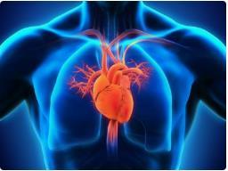 疾病预防|如何尽早发现心血管病变?
