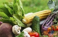 健康饮食老人保护心脑血管吃什么