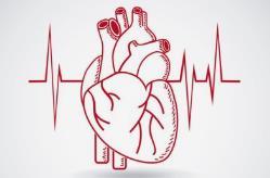 心脏病症状 提前知晓早预防