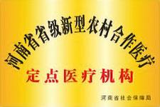 河南省新型农村合作医疗定点医疗机构